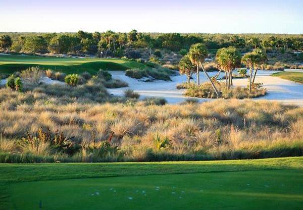 Hammock Golf